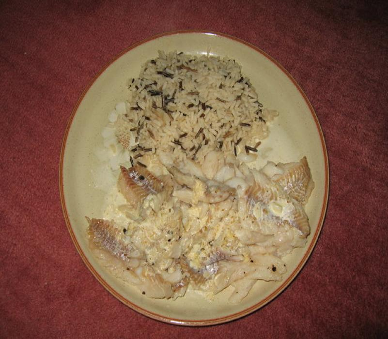 Image of Pollock and Wild Rice with a Mild Cream Curry Sauce
